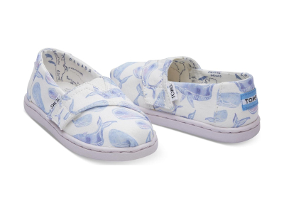 TOMS Watercolor Whale Kid's Alpargata Multi
